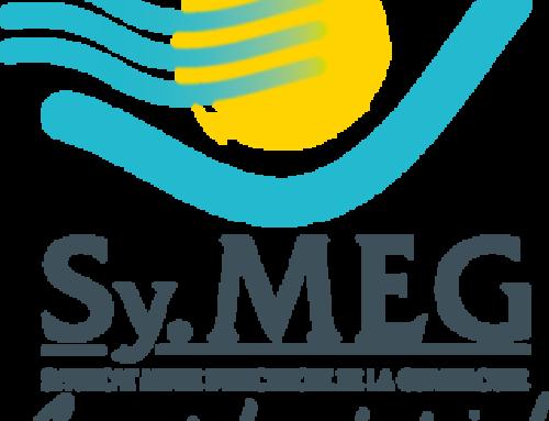 Sy.MEG