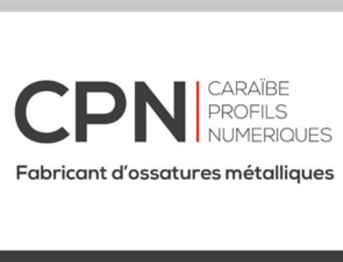 CPN CARAIBES PROFILS NUMÉRIQUES